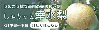 うめこう桃梨苺園の美味しい梨 しゃりっと幸水梨